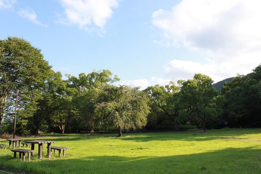 徒歩1分の公園 癒しの場所になりますね♪<br /> ペット可能なので一緒に散歩も楽しめます。<br /> プールやバスケットボールコートもあります。<br /> スポーツする場所は驚く程たくさんあります。
